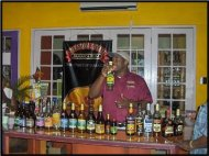 Appleton Rum Tour from Negril
