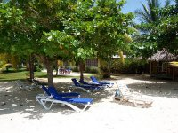 Yellow Bird Beach Day Tour from Negril
